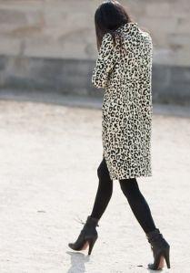 leopard-mdv1