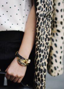 leopard-mdv5
