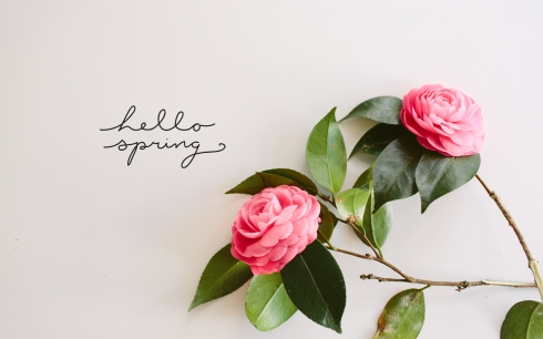 Hello_Spring_WallPaper_01